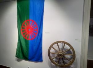 romi i garmin 1107