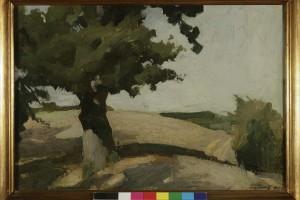 Vladimir Becić_Hrast_1907._ulje, karton_35,5 x 50,5 cm_vl. Moderna galerija, Zagreb