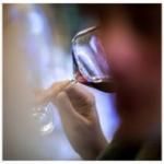Kako će klimatske promjene transformirati vinski sektor